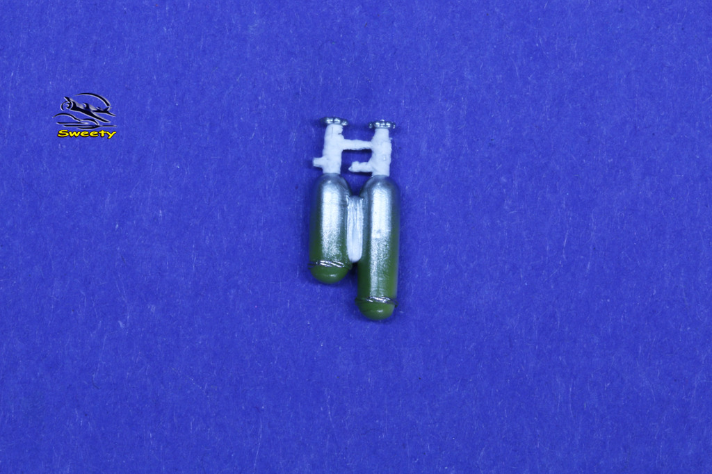 Coc.254.1.JPG