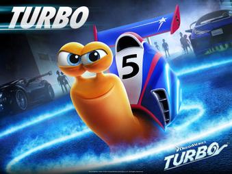 "UKC CH Turn ""Turbo"" Rugostar at Wild Oak"