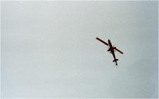 Enlarge photo 175